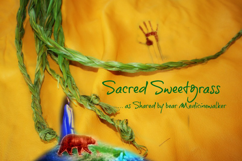 Sacred Sweetgrass final