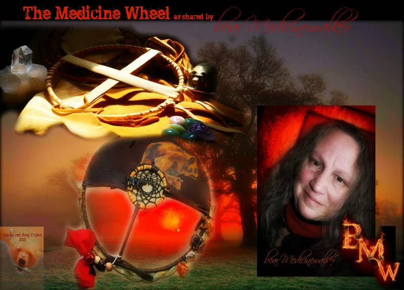 medicinewheelarticle header