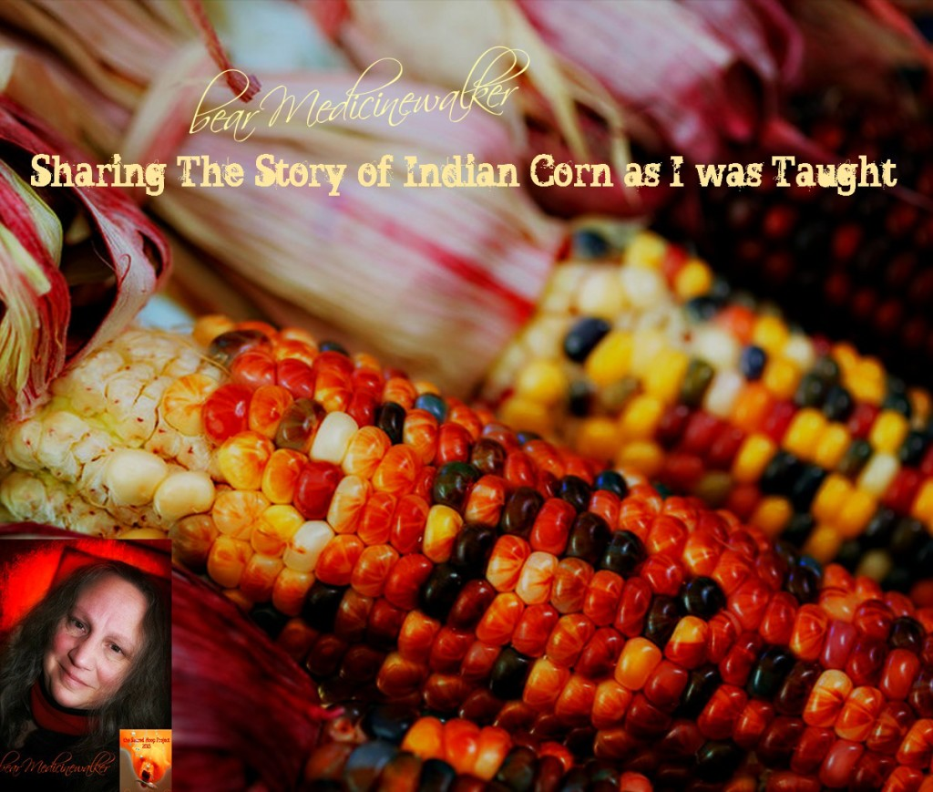 Sharing The Story of Indian Corn as I was Taught